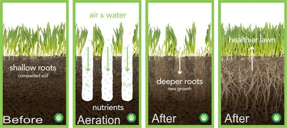 Aeration illustration explanation