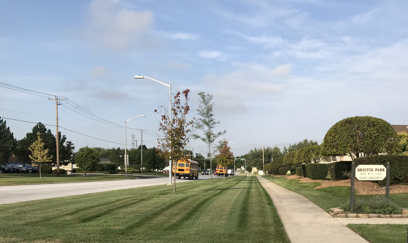 Freshly mowed lawn in residential area subdivision