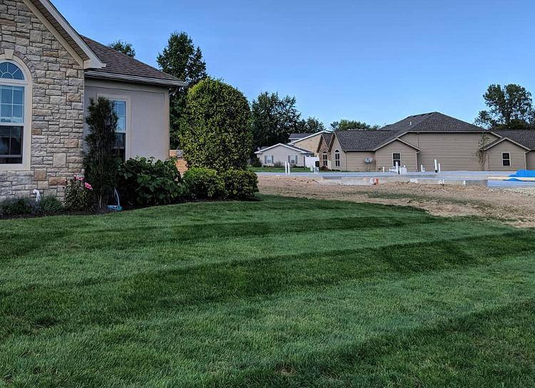 Freshly mowed yard