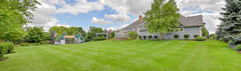 Naperville backyard lawn