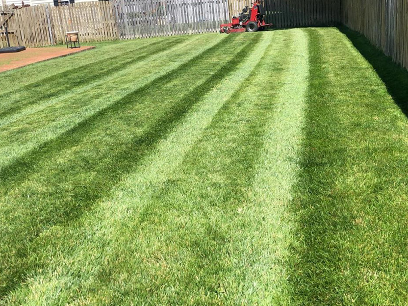 Crew mowing naperville lawn.