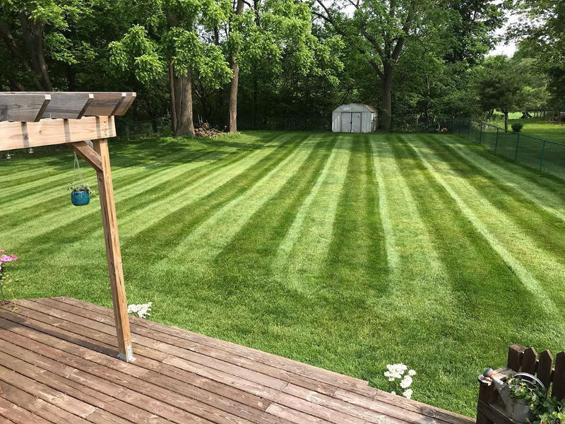 Grass cutting service from top rated company.