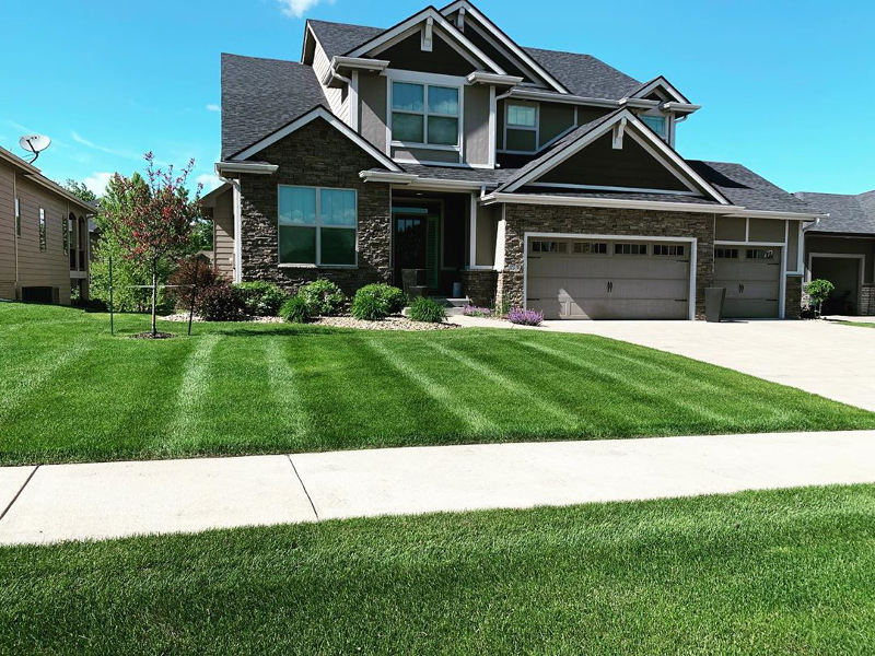Front lawn with green grass